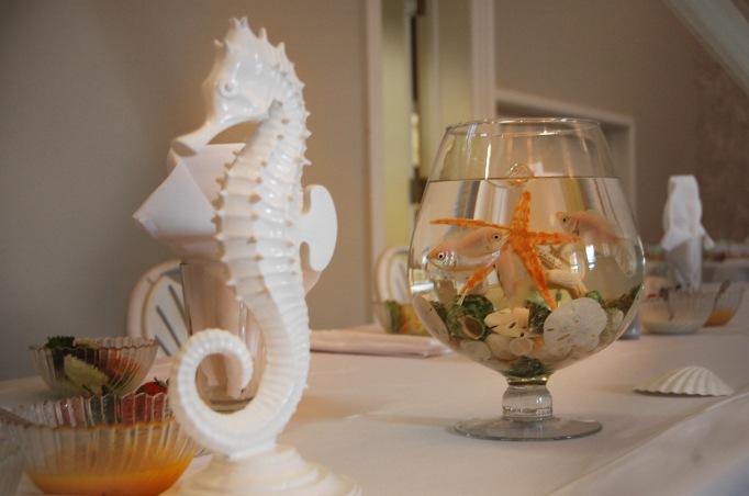Sea Horse and Star Fish